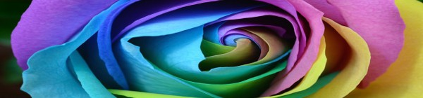 Master Test colori di Lüscher e Fiori di Bach Online Roma